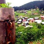 Şavşat gezilecek yerler, Karagöl giriş ve kamp ücretleri 2020