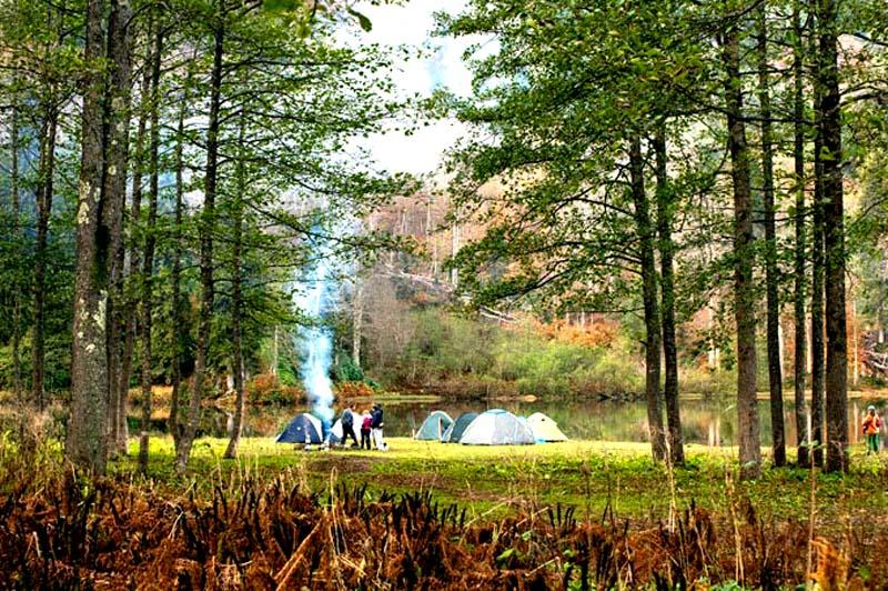 Borçka Kamp ve çadır