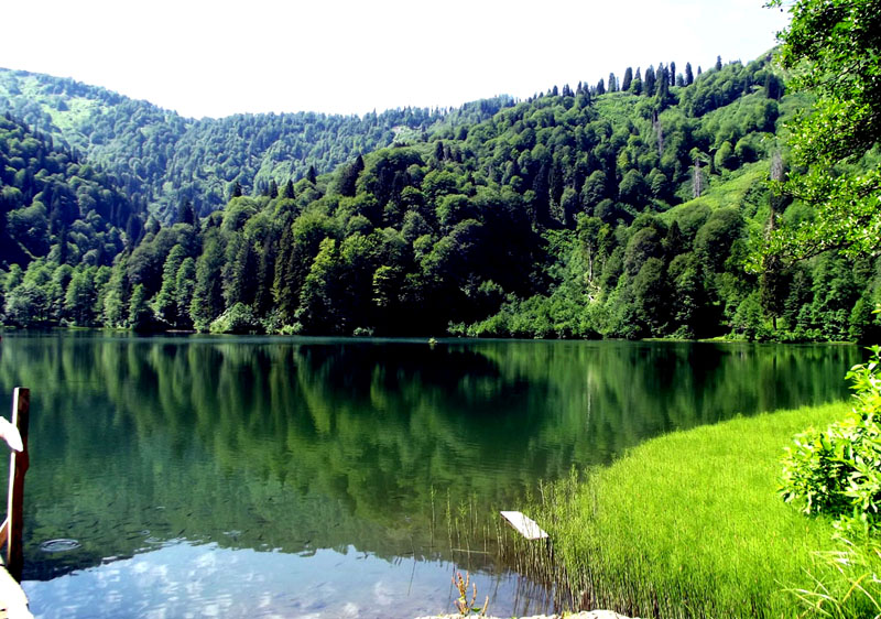 borçka karagöl artvin göl manzarası