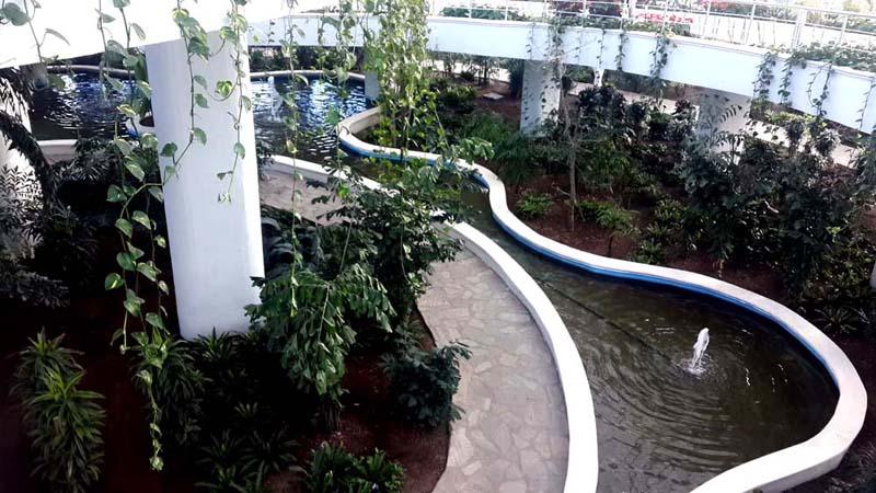 yağmur ormanları expo antalya
