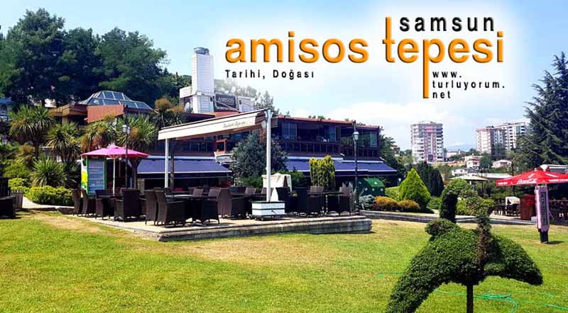 amisos-tepesi samsun