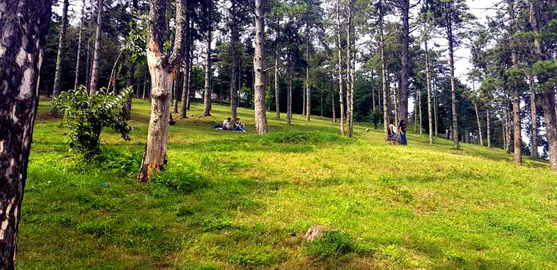 boztepe-piknik-alanı