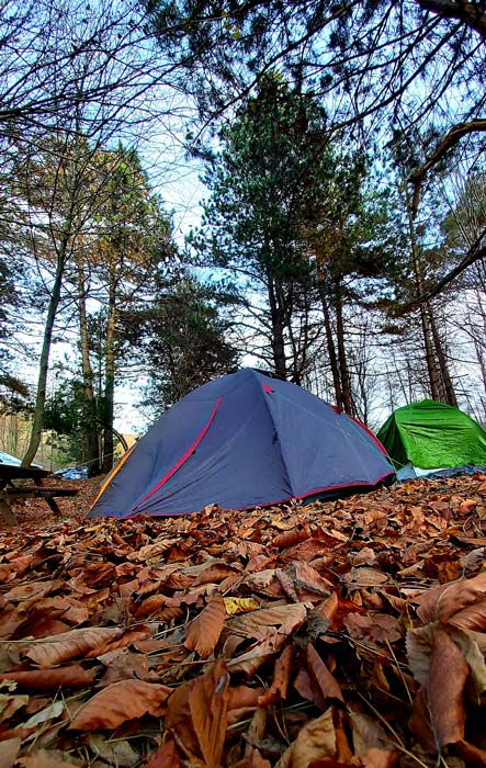 Erikli ücretsiz kamp alanları