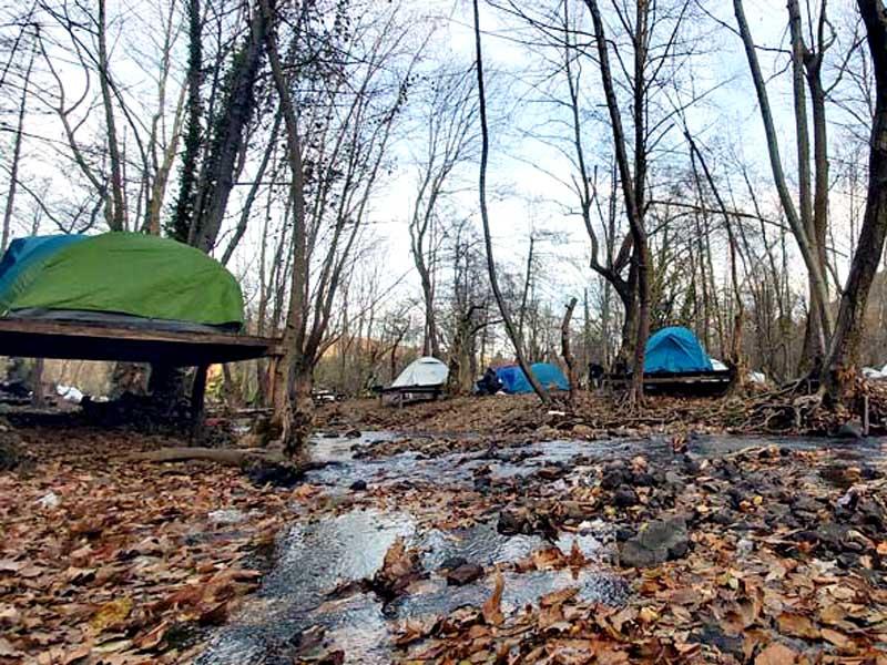 yalova erikli kış kampı