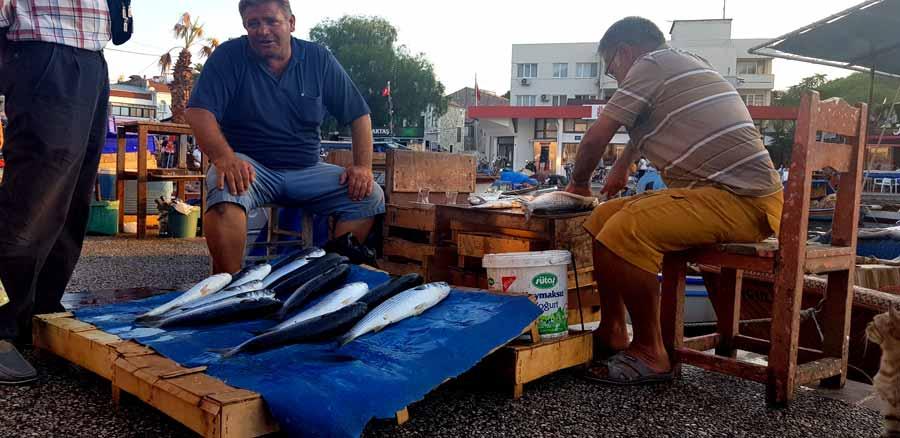 Eski foça balık mezatı