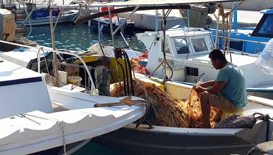 palamutbükü balıkçıları datça