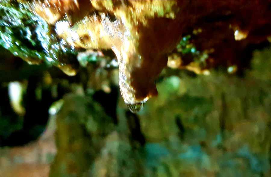 Akçakoca fakıllı mağarası nerede nasıl gidilir