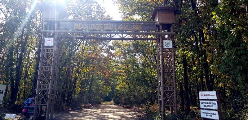 iğneada longoz ormanı giriş ücreti