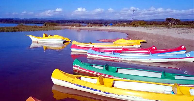 saka gölü longozu
