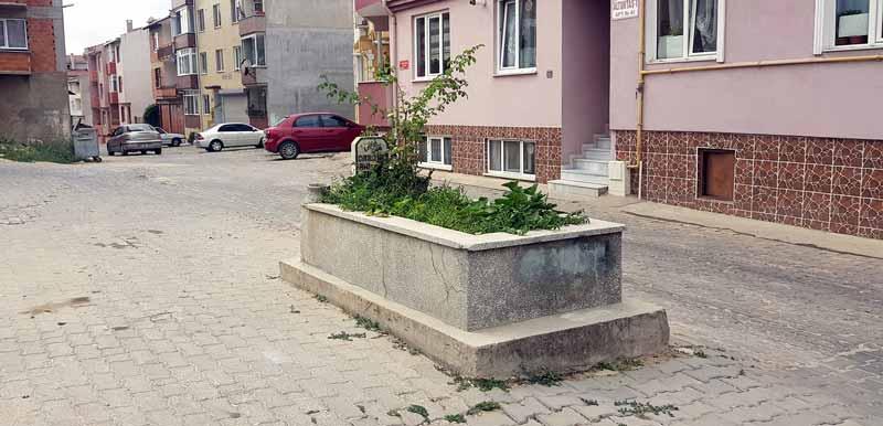 yol ortasındaki tarihi mezar edirne